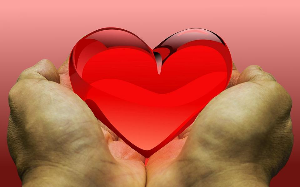 Hoe werkt orgaandonatie eigenlijk?